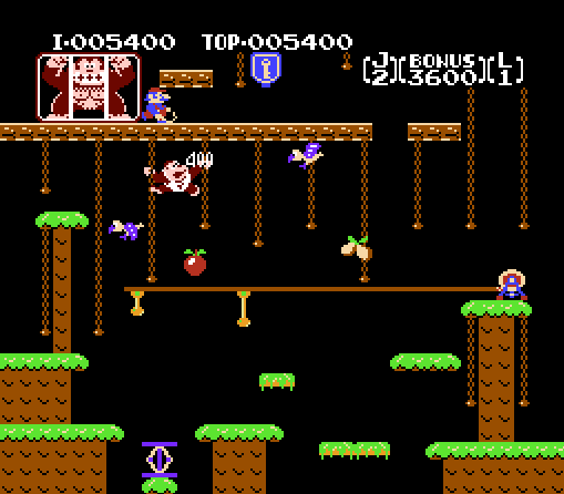 donkey_kong_jr_gameplay_screenshot_2_nes